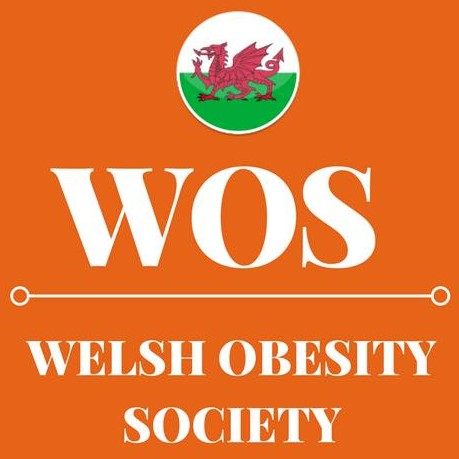 Welsh Obesity Society