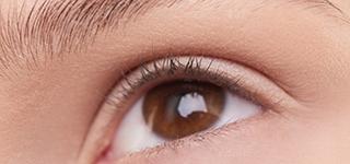 Treating Eyelash and Eyebrow Hypotrichosis