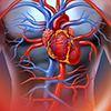 Cardiovascular Risk for Pharmacists